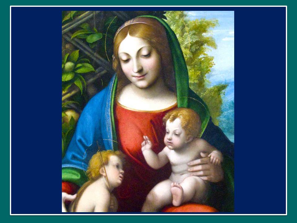 Ecco, questi erano i pensieri che volevo dirvi oggi: vediamo nella Chiesa una buona mamma che ci indica la strada da percorrere nella vita, che sa essere sempre paziente, misericordiosa, comprensiva, e che sa metterci nelle mani di Dio.