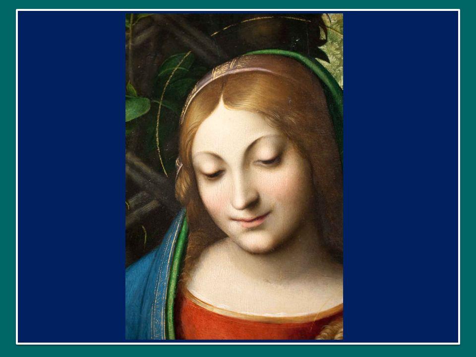 Papa Francesco ha dedicato lUdienza Generale di mercoledì 18 settembre 2013 in Piazza San Pietro alla Chiesa come Madre Papa Francesco ha dedicato lUdienza Generale di mercoledì 18 settembre 2013 in Piazza San Pietro alla Chiesa come Madre