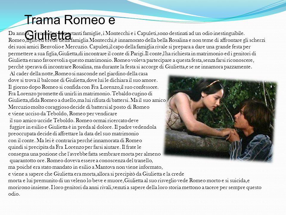 Da anni a Verona due importanti famiglie, i Montecchi e i Capuleti,sono destinati ad un odio inestinguibile. Romeo,figlio ed erede della famiglia Mont
