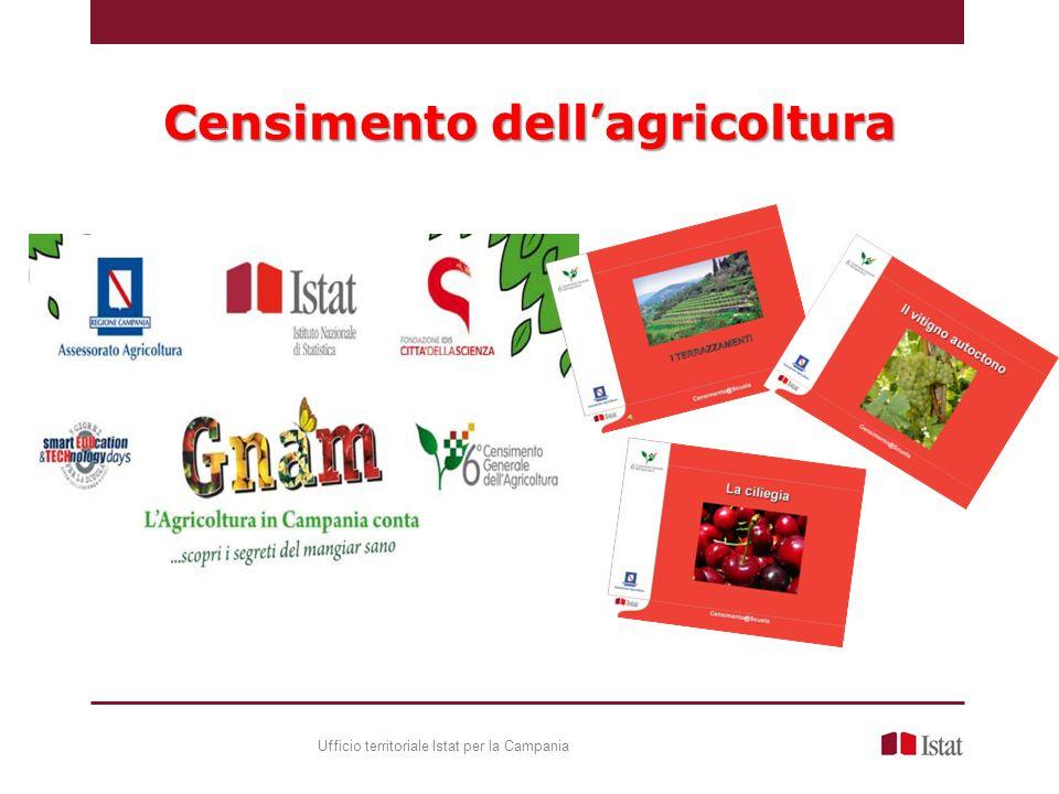 Censimento dellagricoltura Ufficio territoriale Istat per la Campania