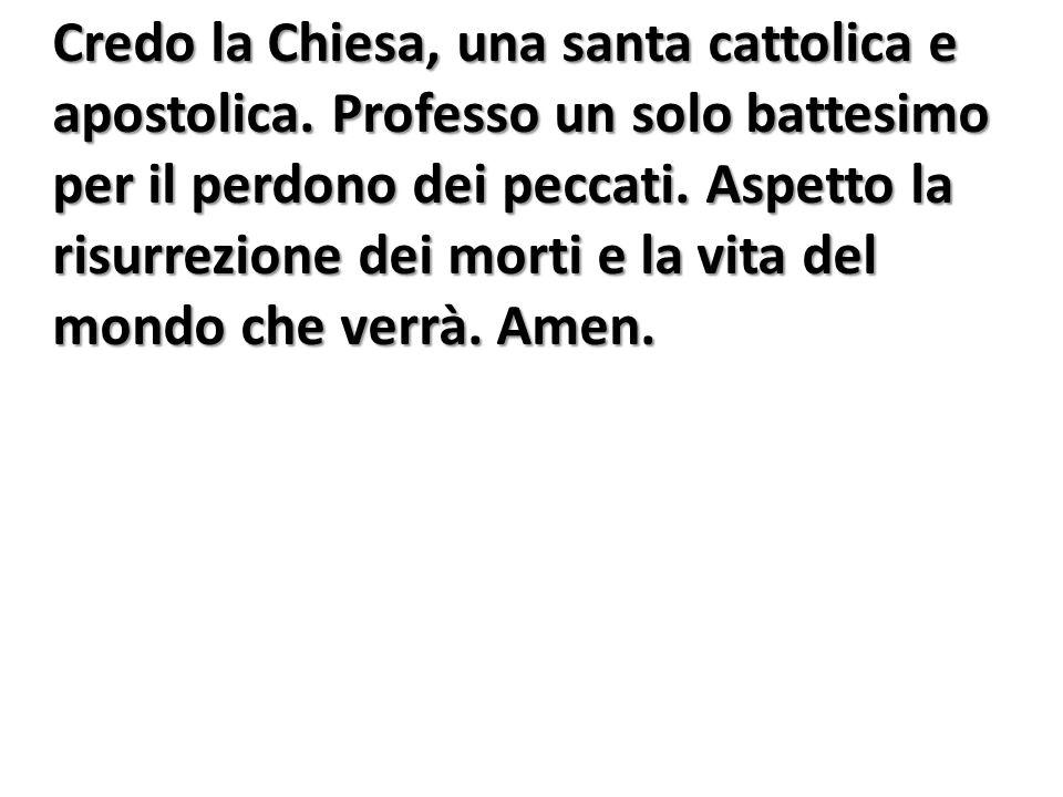 Credo la Chiesa, una santa cattolica e apostolica. Professo un solo battesimo per il perdono dei peccati. Aspetto la risurrezione dei morti e la vita