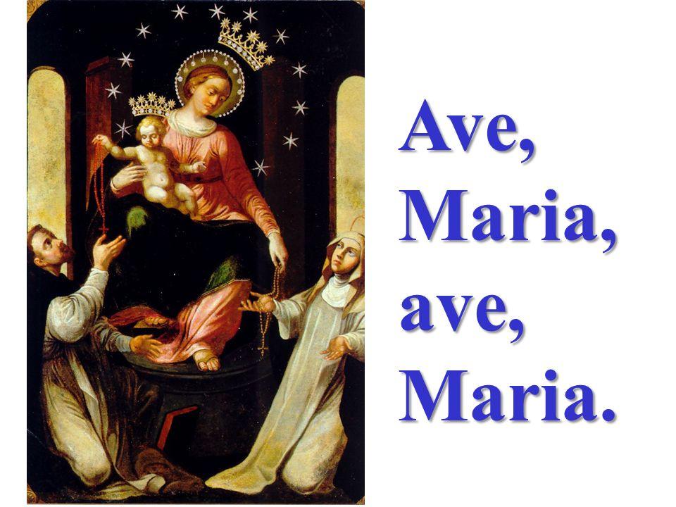 Madre della speranza, veglia sul nostro cammino, guida i nostri passi verso il Figlio Tuo, Maria!