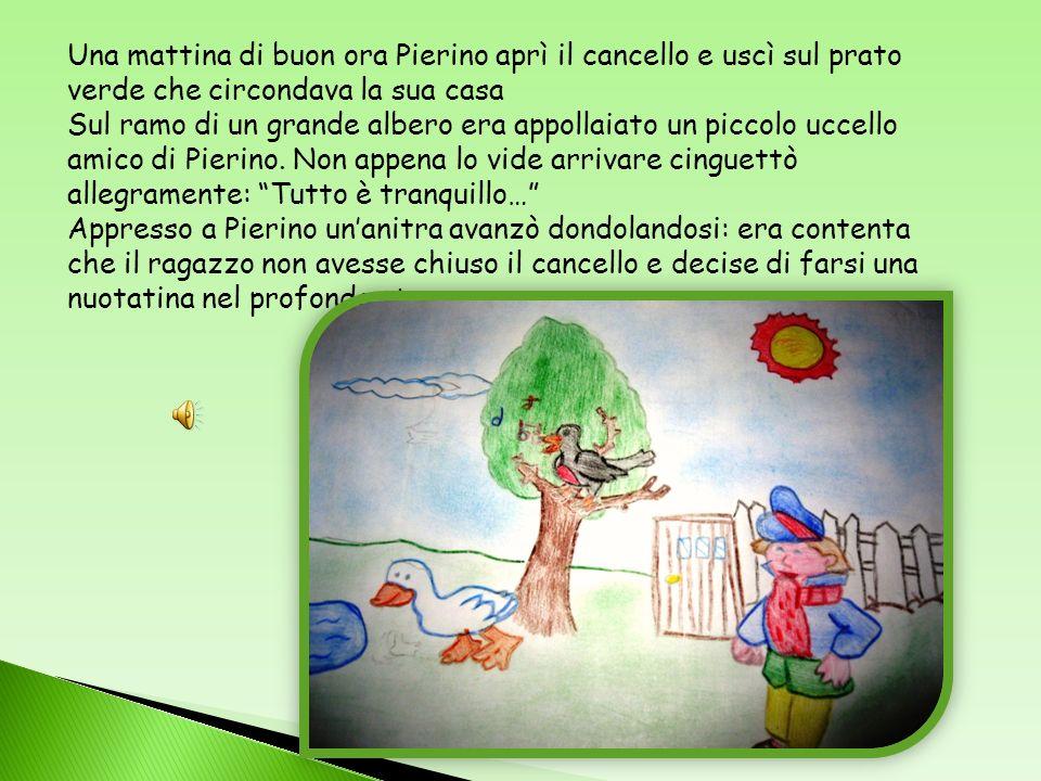 Una mattina di buon ora Pierino aprì il cancello e uscì sul prato verde che circondava la sua casa Sul ramo di un grande albero era appollaiato un piccolo uccello amico di Pierino.