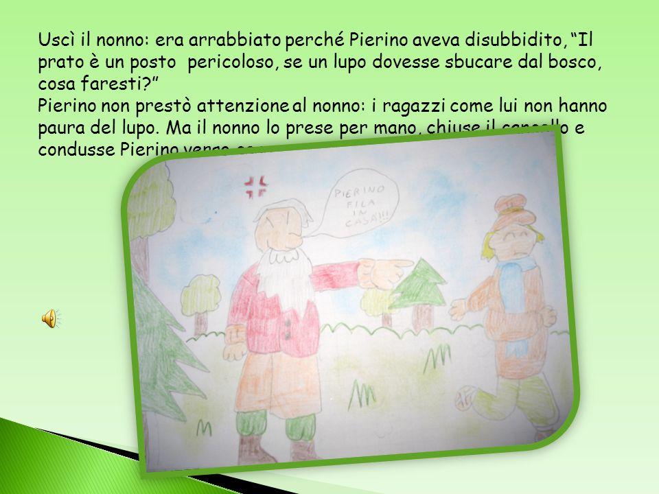 Uscì il nonno: era arrabbiato perché Pierino aveva disubbidito, Il prato è un posto pericoloso, se un lupo dovesse sbucare dal bosco, cosa faresti.