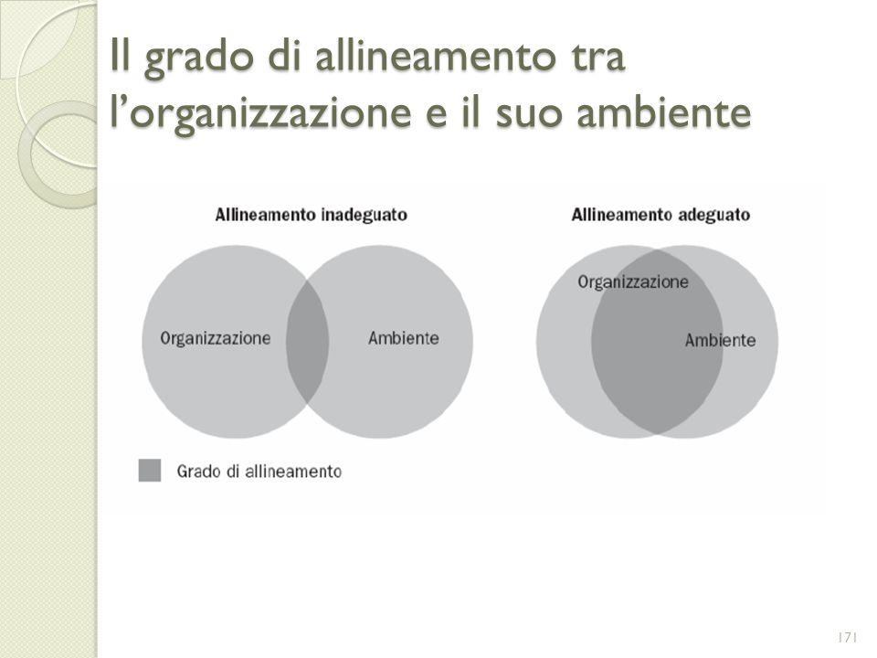 Il grado di allineamento tra lorganizzazione e il suo ambiente 171
