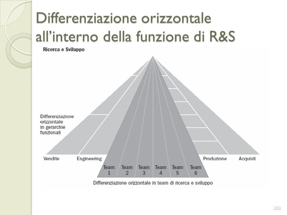 Differenziazione orizzontale allinterno della funzione di R&S 202