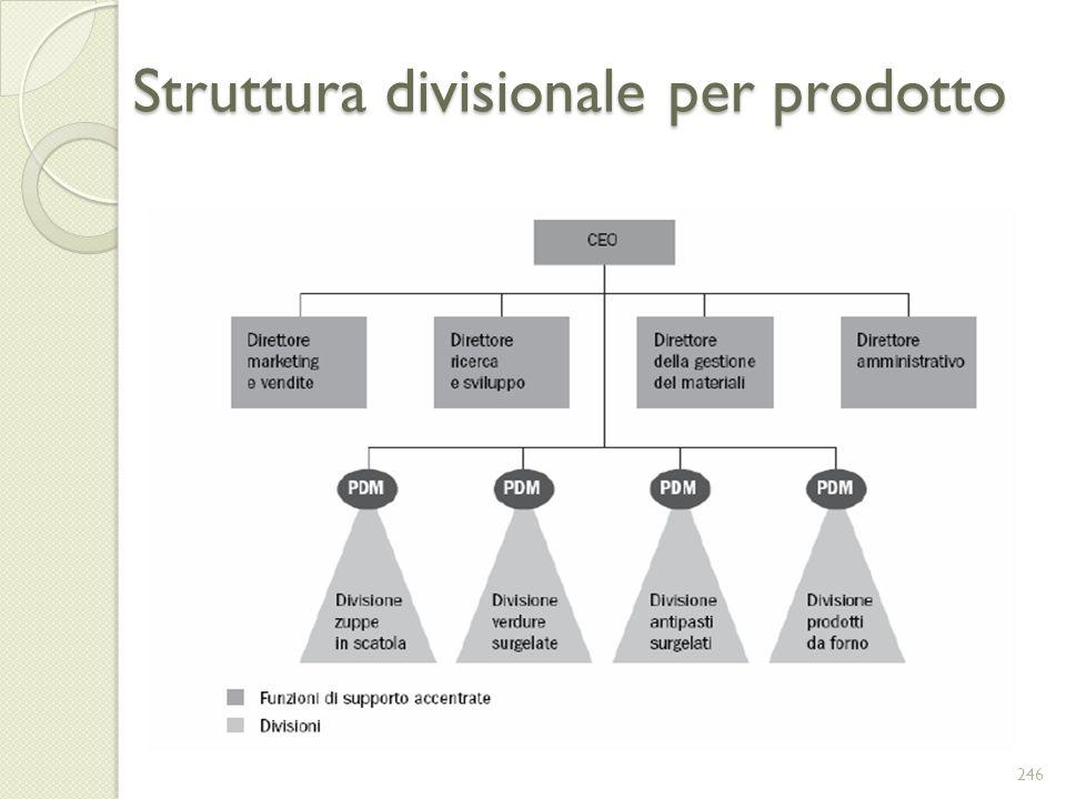 Struttura divisionale per prodotto 246