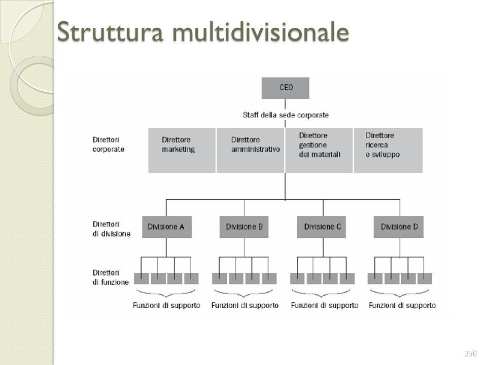 Struttura multidivisionale 250