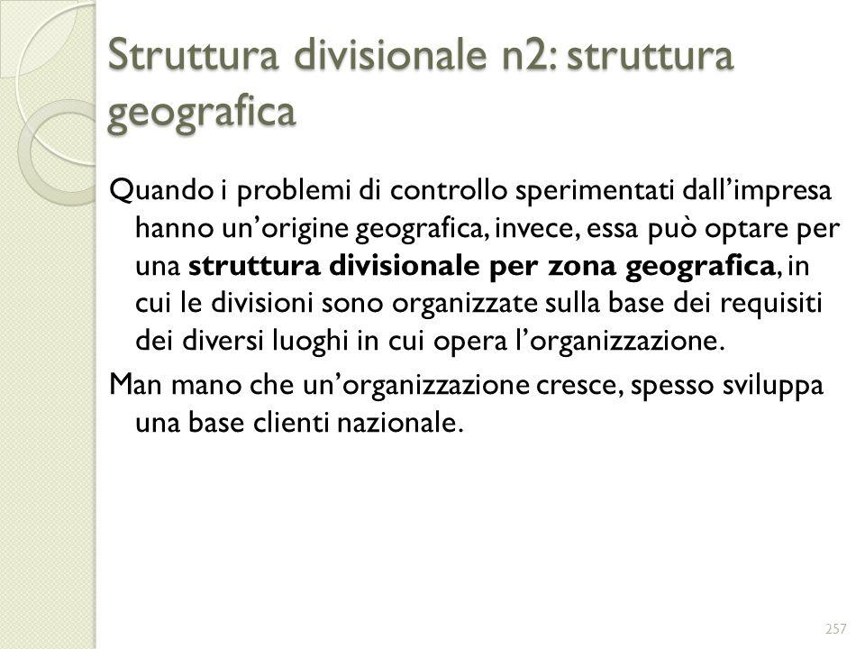 Struttura divisionale n2: struttura geografica Quando i problemi di controllo sperimentati dallimpresa hanno unorigine geografica, invece, essa può op