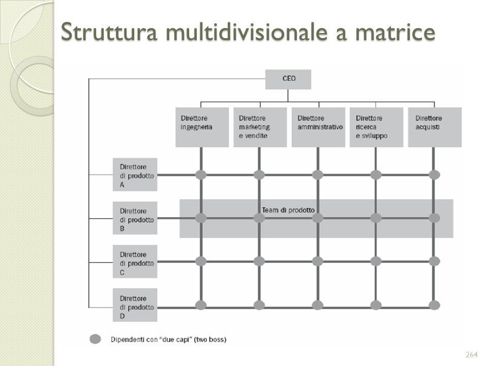 Struttura multidivisionale a matrice 264
