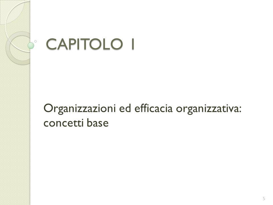 CAPITOLO 1 Organizzazioni ed efficacia organizzativa: concetti base 5