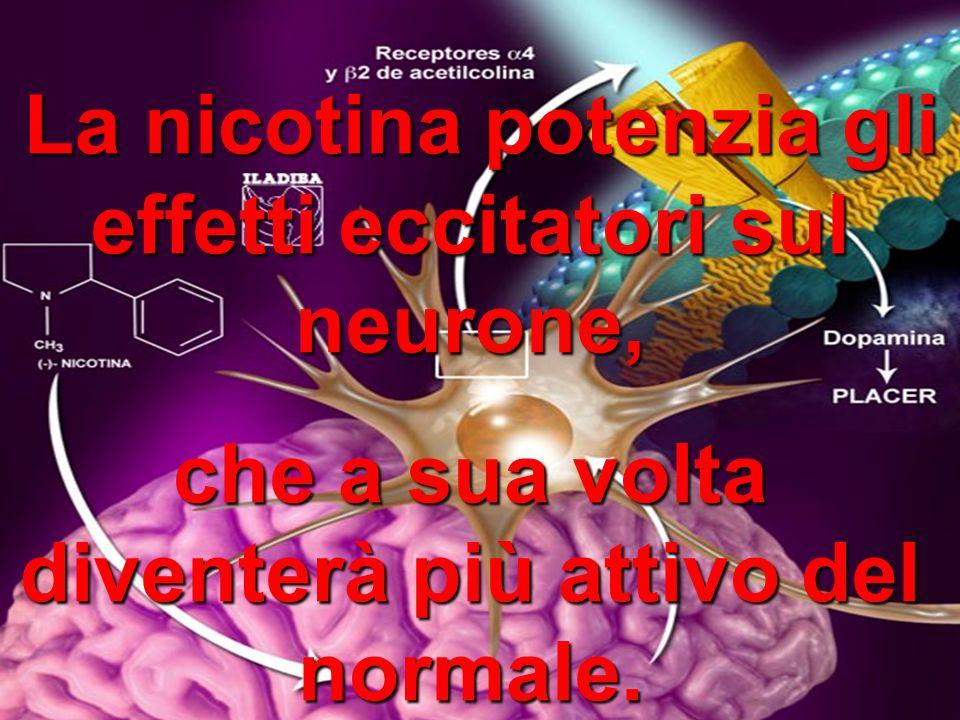 L LL La nicotina potenzia gli effetti eccitatori sul neurone, che a sua volta diventerà più attivo del normale.