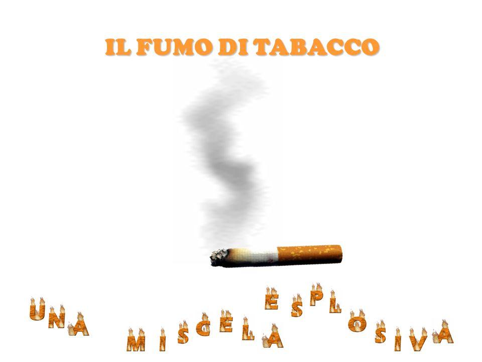 IL FUMO DI TABACCO CONTIENE OLTRE 4000 COMPONENTI DANNOSI Associazione Culturale MiRos A.V.O.