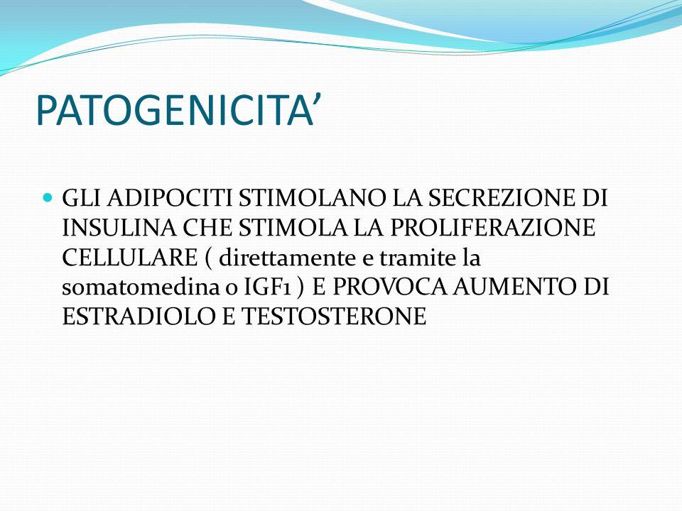 PATOGENICITA GLI ADIPOCITI STIMOLANO LA SECREZIONE DI INSULINA CHE STIMOLA LA PROLIFERAZIONE CELLULARE ( direttamente e tramite la somatomedina o IGF1 ) E PROVOCA AUMENTO DI ESTRADIOLO E TESTOSTERONE
