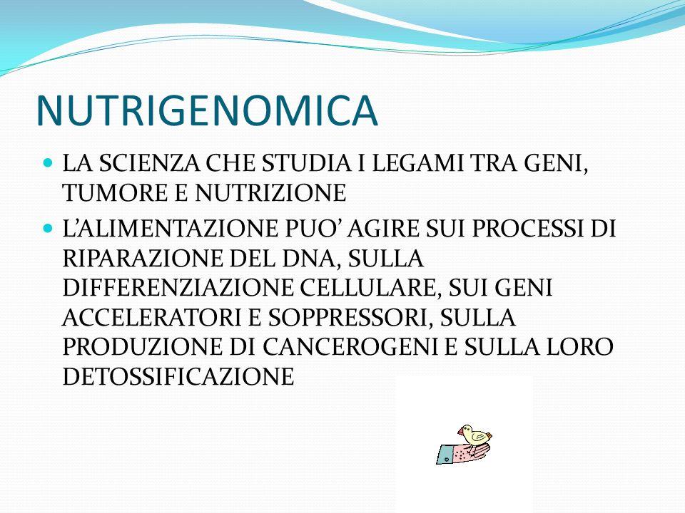 NUTRIGENOMICA LA SCIENZA CHE STUDIA I LEGAMI TRA GENI, TUMORE E NUTRIZIONE LALIMENTAZIONE PUO AGIRE SUI PROCESSI DI RIPARAZIONE DEL DNA, SULLA DIFFERENZIAZIONE CELLULARE, SUI GENI ACCELERATORI E SOPPRESSORI, SULLA PRODUZIONE DI CANCEROGENI E SULLA LORO DETOSSIFICAZIONE