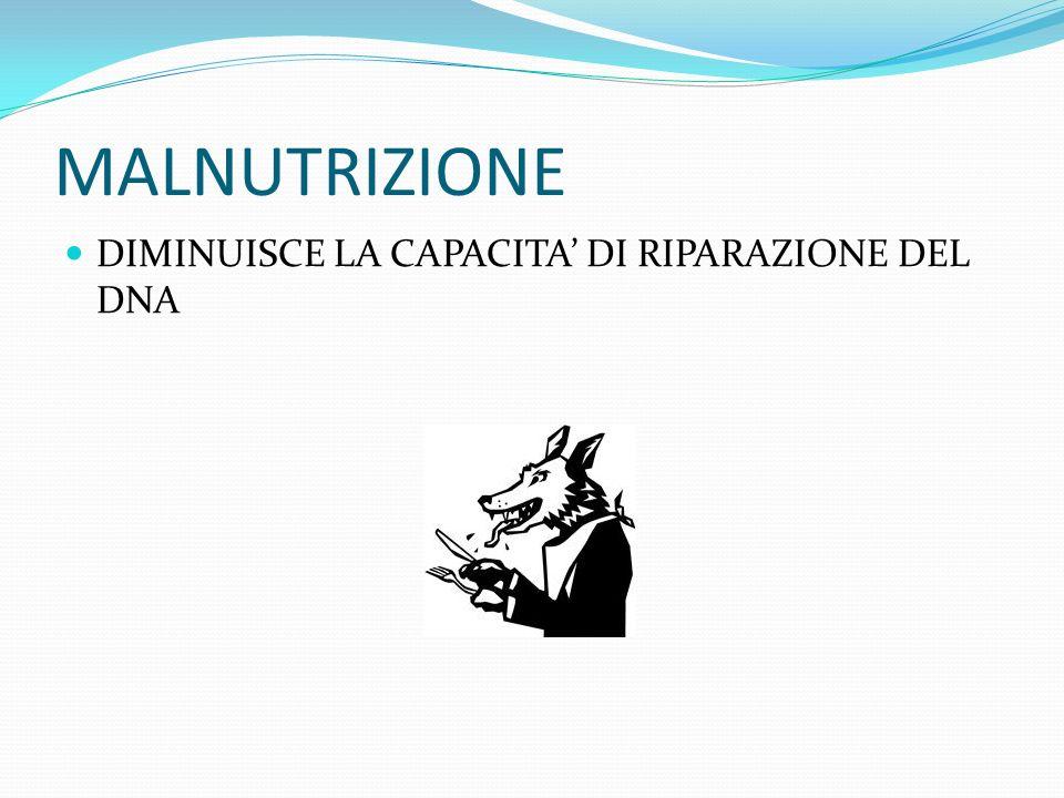 MALNUTRIZIONE DIMINUISCE LA CAPACITA DI RIPARAZIONE DEL DNA