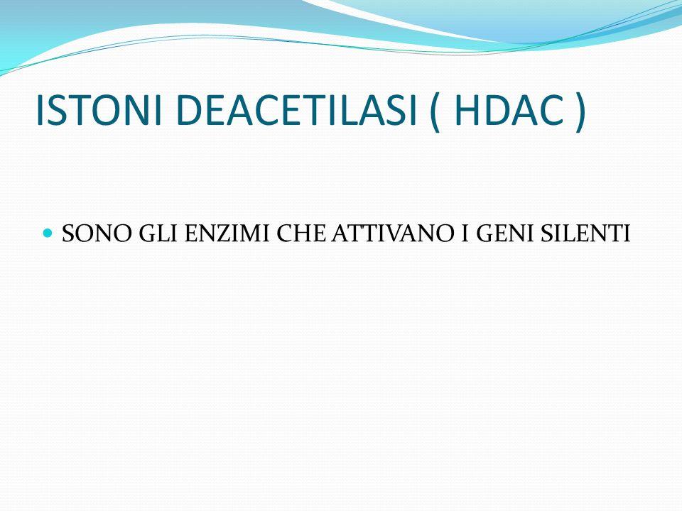 ISTONI DEACETILASI ( HDAC ) SONO GLI ENZIMI CHE ATTIVANO I GENI SILENTI