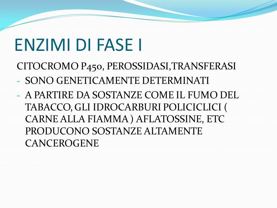 ENZIMI DI FASE I CITOCROMO P450, PEROSSIDASI,TRANSFERASI - SONO GENETICAMENTE DETERMINATI - A PARTIRE DA SOSTANZE COME IL FUMO DEL TABACCO, GLI IDROCARBURI POLICICLICI ( CARNE ALLA FIAMMA ) AFLATOSSINE, ETC PRODUCONO SOSTANZE ALTAMENTE CANCEROGENE