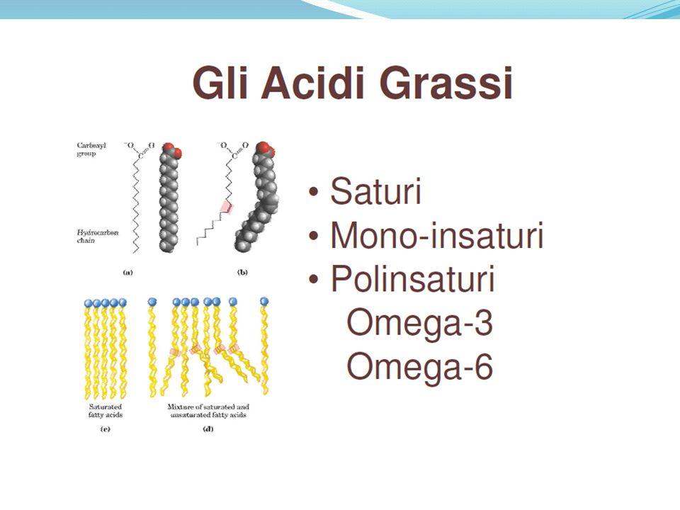 EICOSANOIDI BUONI Vengono prodotti a partire dagli acidi grassi omega 3 e - Inibiscono laggregazione piastrinica - Favoriscono la vasodilatazione - Inibiscono la proliferazione cellulare - Stimolano la risposta immunitaria - Combattono linfiammazione
