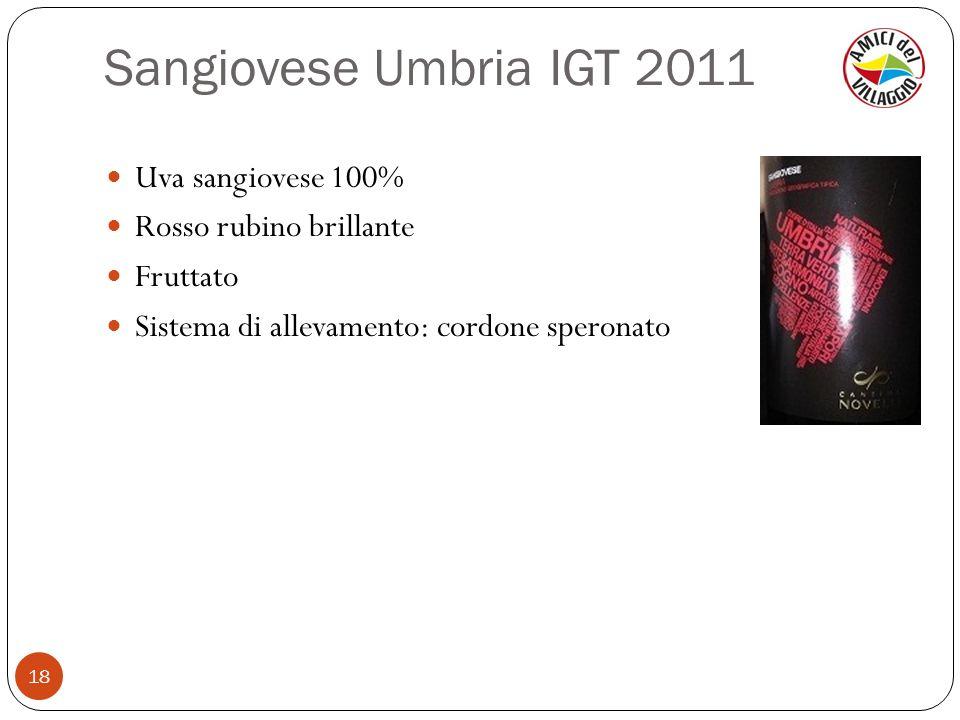 Sangiovese Umbria IGT 2011 18 Uva sangiovese 100% Rosso rubino brillante Fruttato Sistema di allevamento: cordone speronato