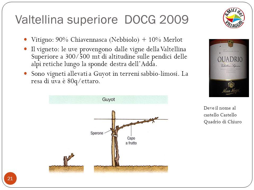 Valtellina superiore DOCG 2009 21 Vitigno: 90% Chiavennasca (Nebbiolo) + 10% Merlot Il vigneto: le uve provengono dalle vigne della Valtellina Superio