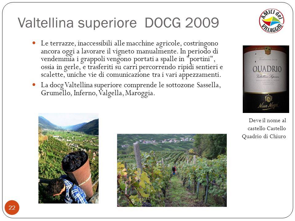 Valtellina superiore DOCG 2009 22 Le terrazze, inaccessibili alle macchine agricole, costringono ancora oggi a lavorare il vigneto manualmente. In per