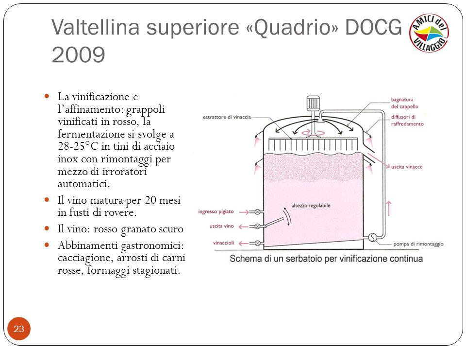 Valtellina superiore «Quadrio» DOCG 2009 23 La vinificazione e laffinamento: grappoli vinificati in rosso, la fermentazione si svolge a 28-25°C in tin