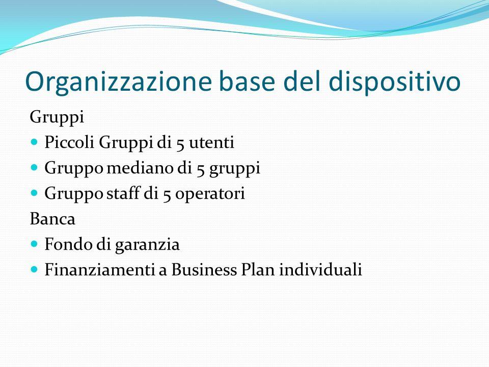 Organizzazione base del dispositivo Gruppi Piccoli Gruppi di 5 utenti Gruppo mediano di 5 gruppi Gruppo staff di 5 operatori Banca Fondo di garanzia Finanziamenti a Business Plan individuali