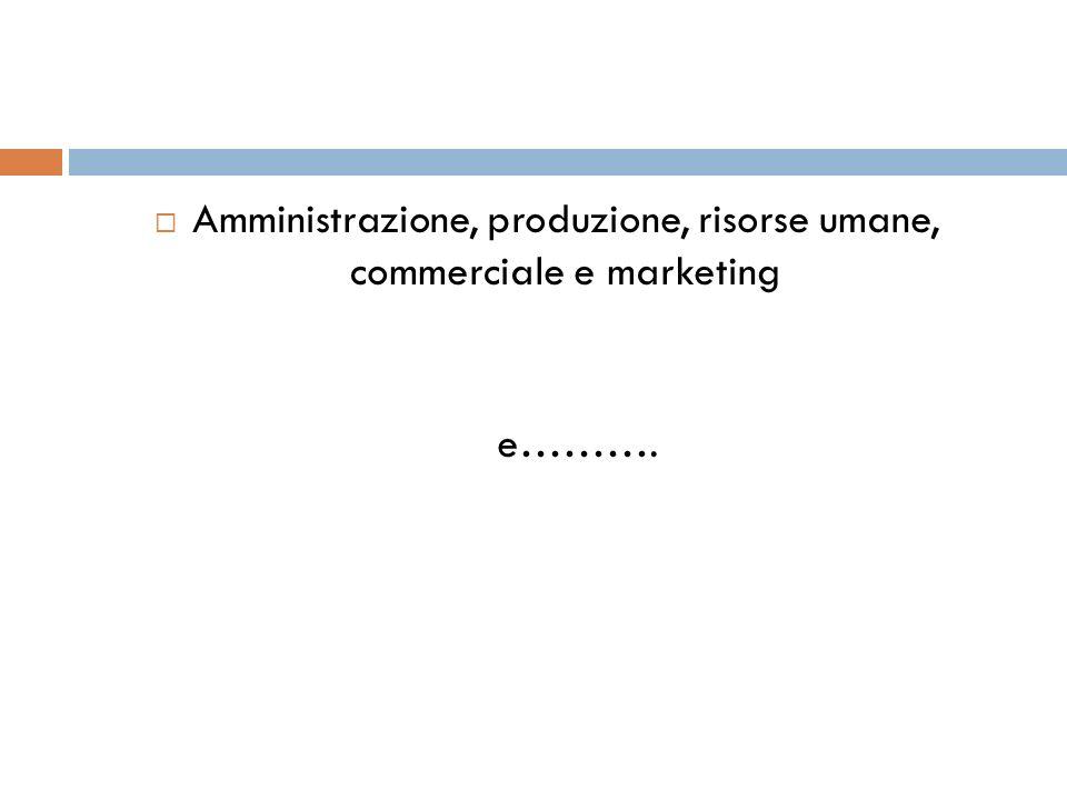 Amministrazione, produzione, risorse umane, commerciale e marketing e……….