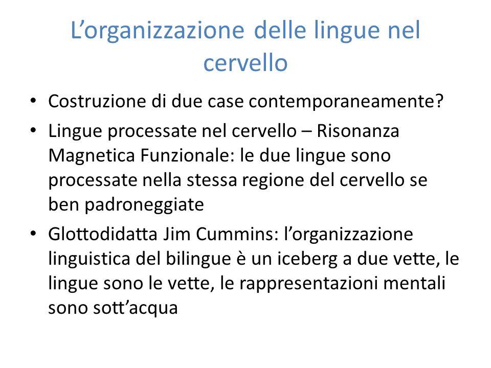Lorganizzazione delle lingue nel cervello Costruzione di due case contemporaneamente? Lingue processate nel cervello – Risonanza Magnetica Funzionale:
