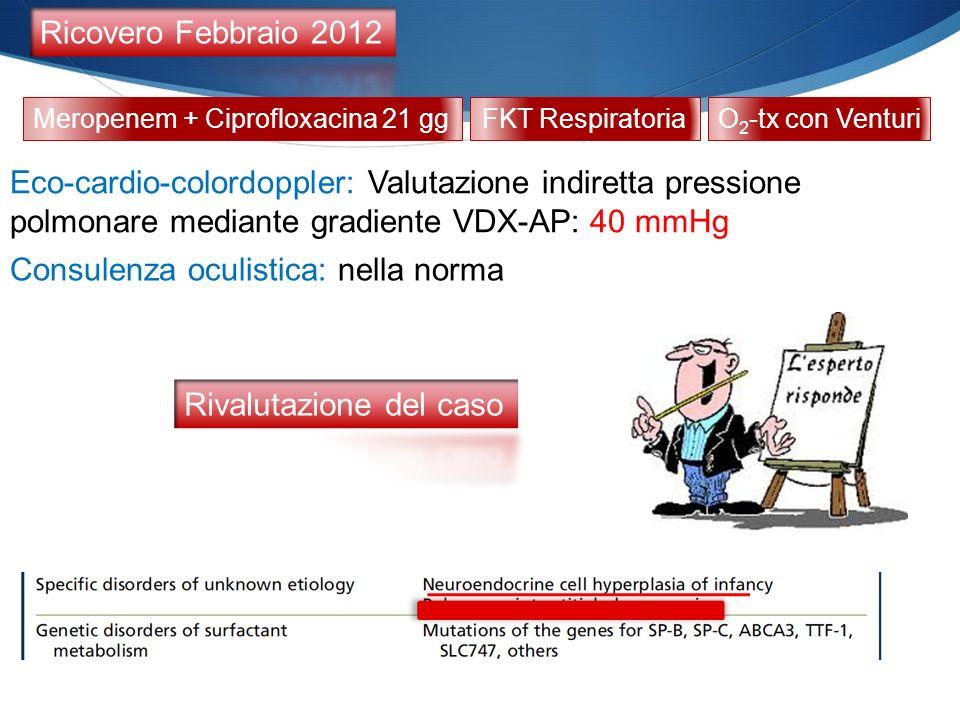 Meropenem + Ciprofloxacina 21 gg Consulenza oculistica: nella norma FKT RespiratoriaO 2 -tx con Venturi Eco-cardio-colordoppler: Valutazione indiretta pressione polmonare mediante gradiente VDX-AP: 40 mmHg