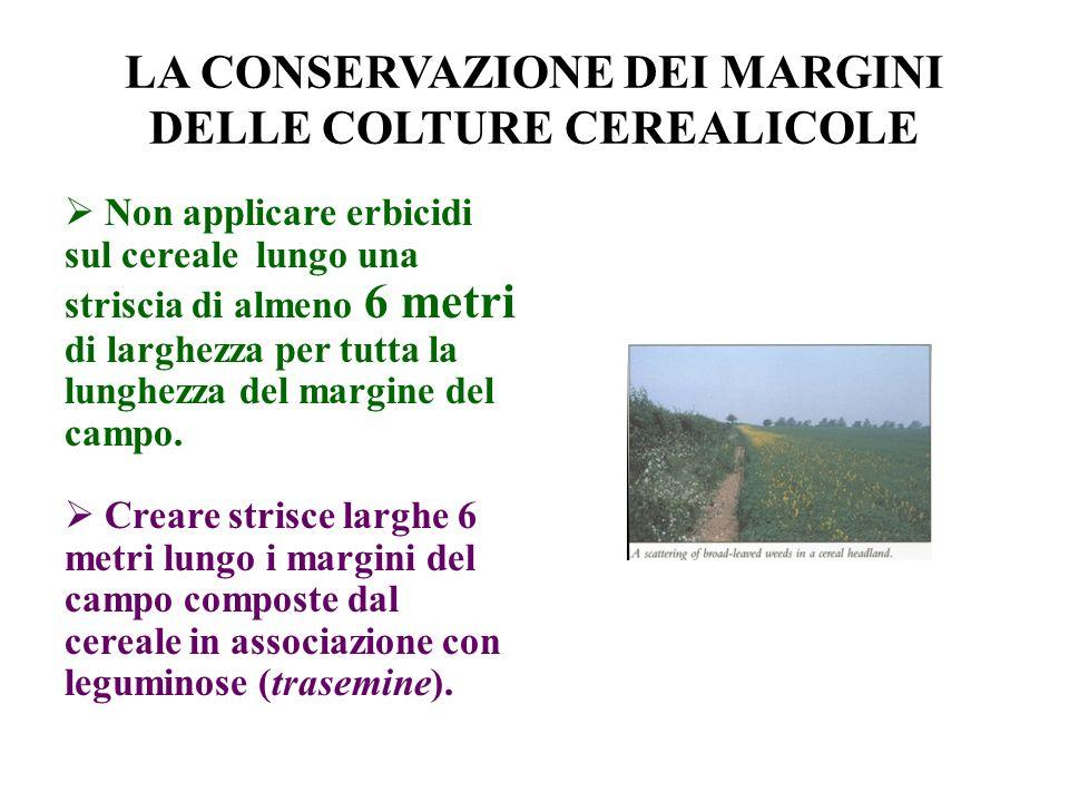 LA CONSERVAZIONE DEI MARGINI DELLE COLTURE CEREALICOLE Non applicare erbicidi sul cereale lungo una striscia di almeno 6 metri di larghezza per tutta la lunghezza del margine del campo.