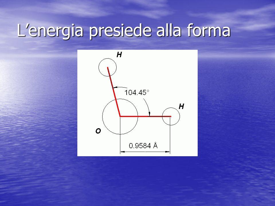 Lenergia presiede alla forma