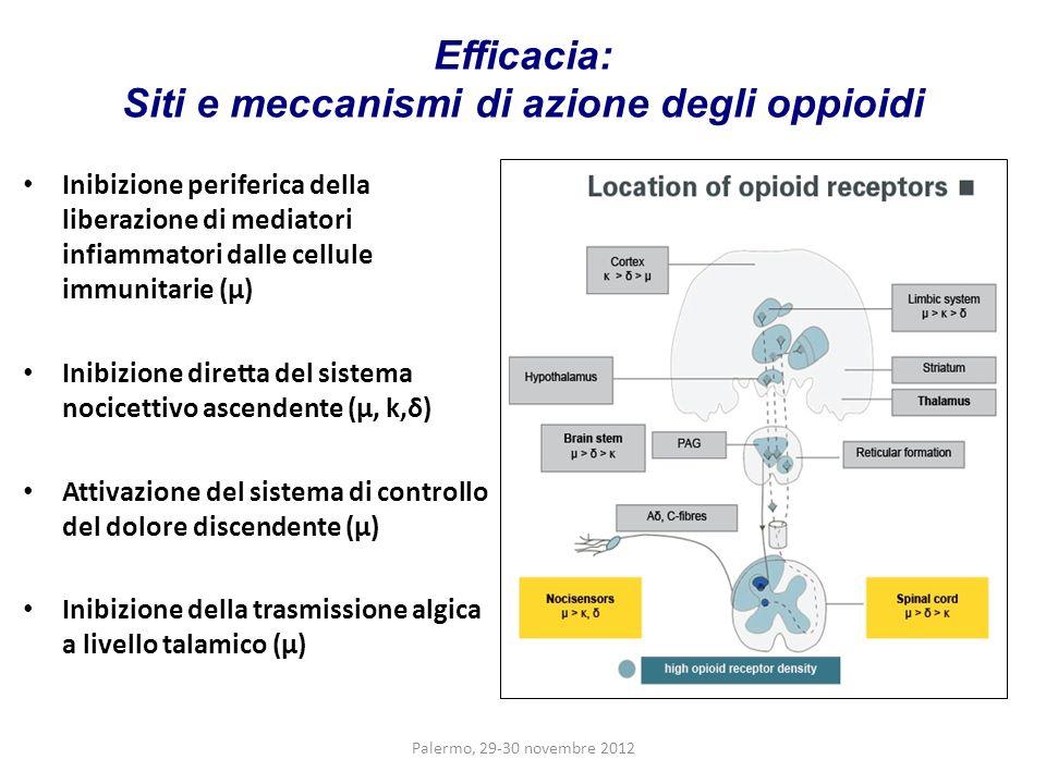 Efficacia: Siti e meccanismi di azione degli oppioidi Inibizione periferica della liberazione di mediatori infiammatori dalle cellule immunitarie (μ)