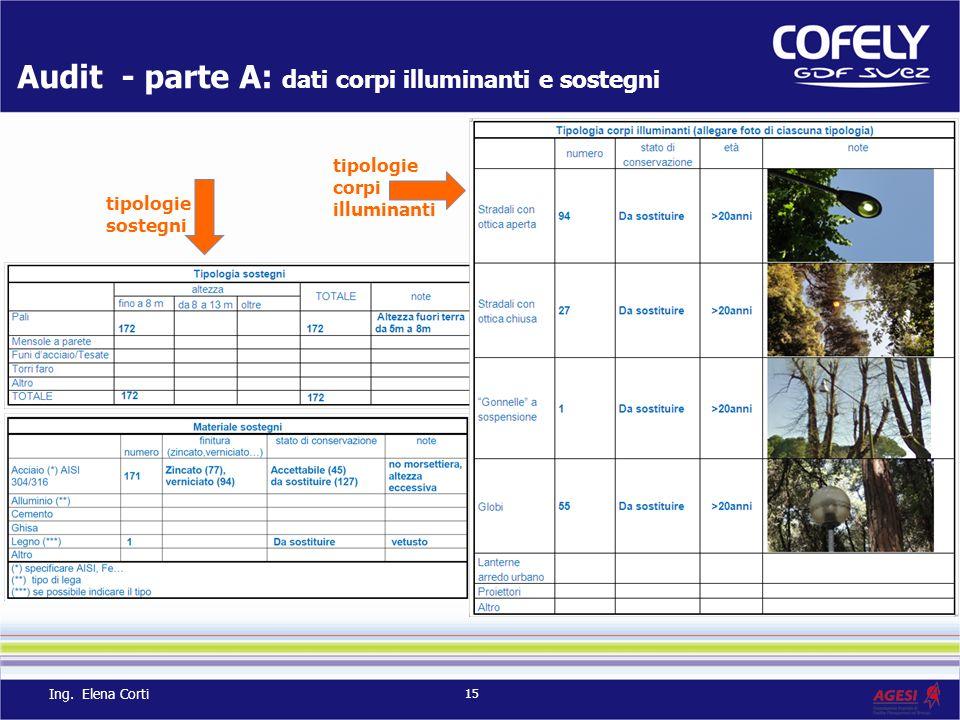 Audit - parte A: dati corpi illuminanti e sostegni tipologie corpi illuminanti tipologie sostegni 15 Ing. Elena Corti