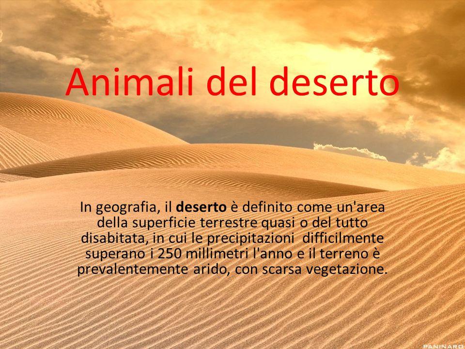 Animali del deserto In geografia, il deserto è definito come un'area della superficie terrestre quasi o del tutto disabitata, in cui le precipitazioni