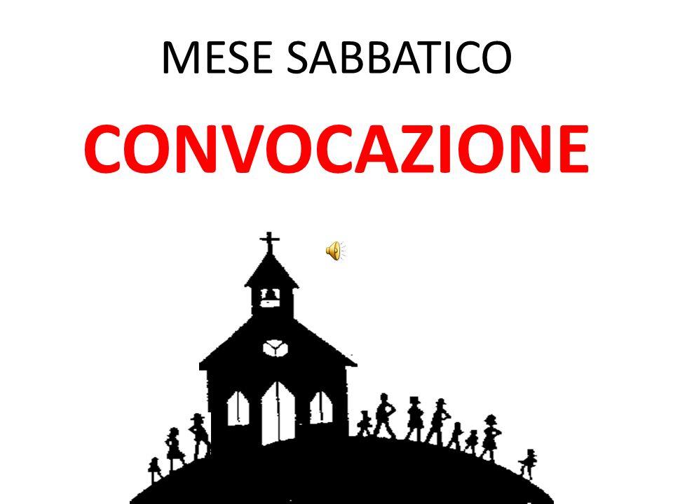 MESE SABBATICO CONVOCAZIONE
