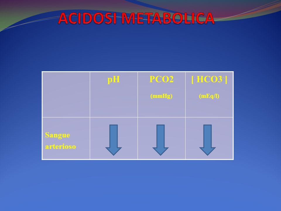 pHPCO2 (mmHg) [ HCO3 - ] (mEq/l) Sangue arterioso