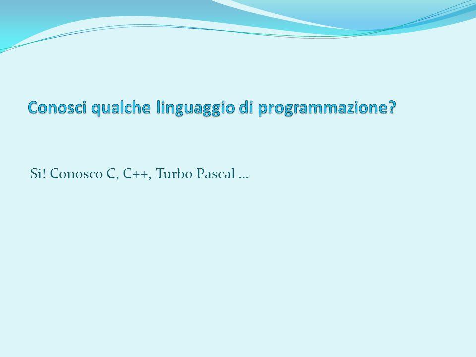 Si! Conosco C, C++, Turbo Pascal …