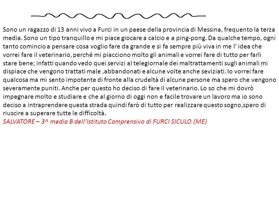 Sono un ragazzo di 13 anni vivo a Furci in un paese della provincia di Messina, frequento la terza media. Sono un tipo tranquillo e mi piace giocare a