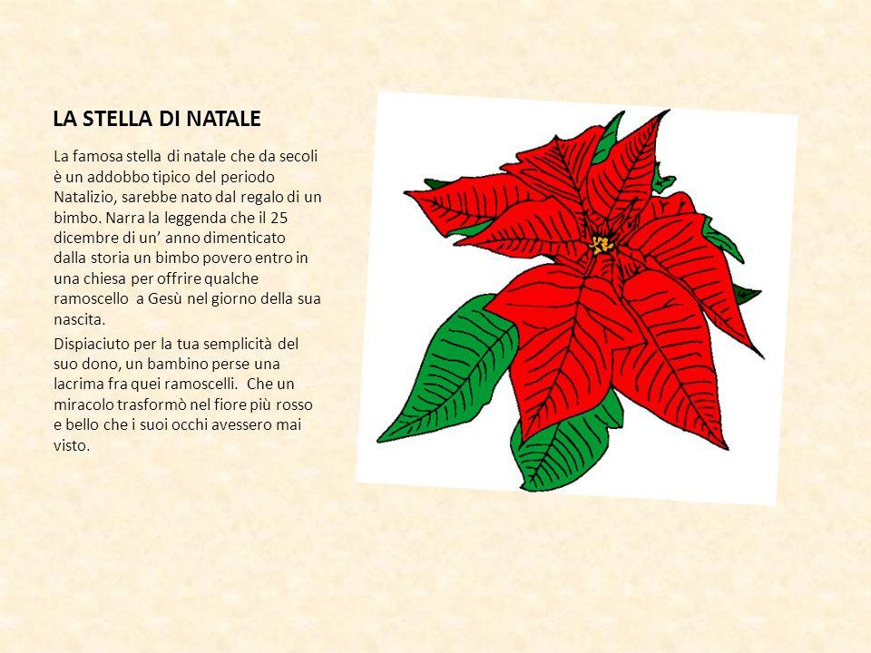 LA STELLA DI NATALE La famosa stella di natale che da secoli è un addobbo tipico del periodo Natalizio, sarebbe nato dal regalo di un bimbo. Narra la
