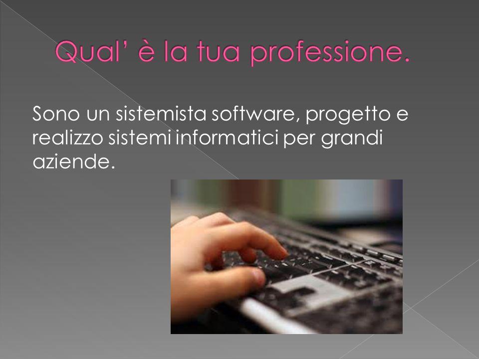 Sono un sistemista software, progetto e realizzo sistemi informatici per grandi aziende.