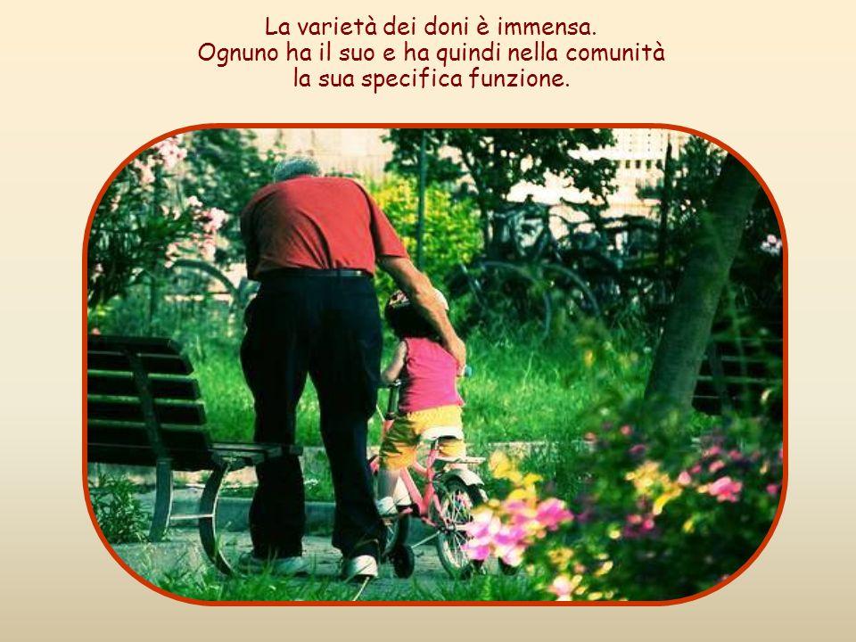 Usate bene i vari doni di Dio: ciascuno metta a servizio degli altri la grazia particolare che ha ricevuto