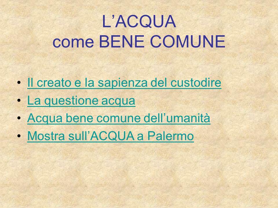 LACQUA come BENE COMUNE Il creato e la sapienza del custodire La questione acqua Acqua bene comune dellumanità Mostra sullACQUA a Palermo