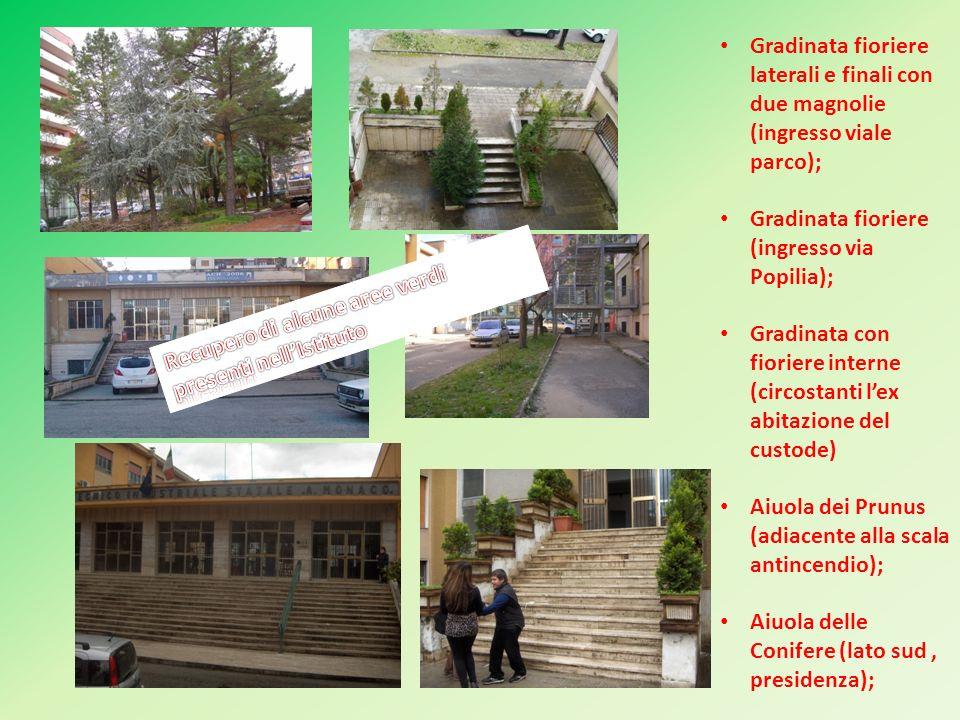 Gradinata fioriere laterali e finali con due magnolie (ingresso viale parco); Gradinata fioriere (ingresso via Popilia); Gradinata con fioriere intern