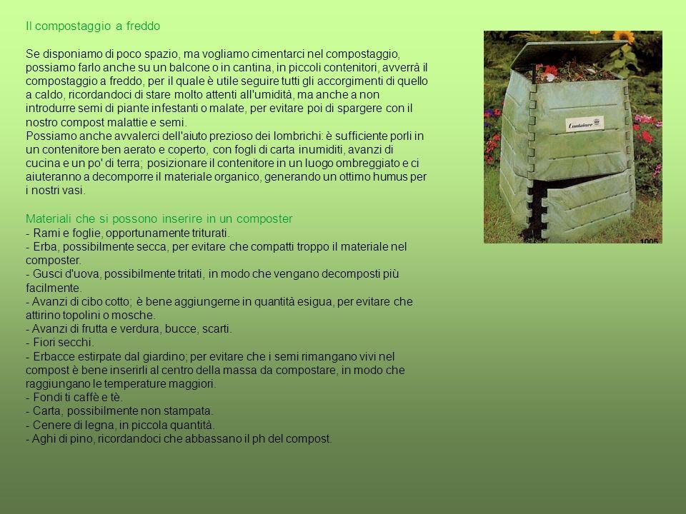 Il compostaggio a freddo Se disponiamo di poco spazio, ma vogliamo cimentarci nel compostaggio, possiamo farlo anche su un balcone o in cantina, in piccoli contenitori, avverrà il compostaggio a freddo, per il quale è utile seguire tutti gli accorgimenti di quello a caldo, ricordandoci di stare molto attenti all umidità, ma anche a non introdurre semi di piante infestanti o malate, per evitare poi di spargere con il nostro compost malattie e semi.