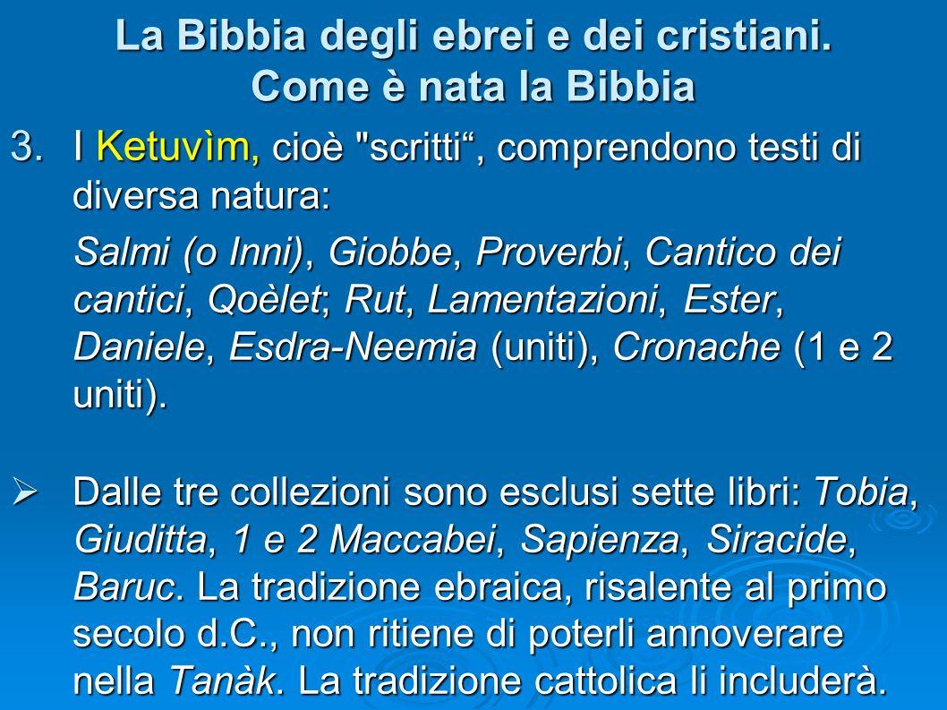 La Bibbia degli ebrei e dei cristiani. Come è nata la Bibbia 3.I Ketuvìm, cioè