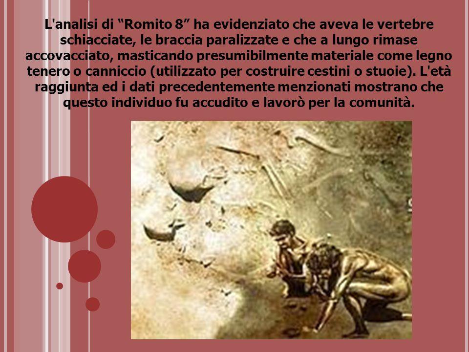 L'analisi di Romito 8 ha evidenziato che aveva le vertebre schiacciate, le braccia paralizzate e che a lungo rimase accovacciato, masticando presumibi