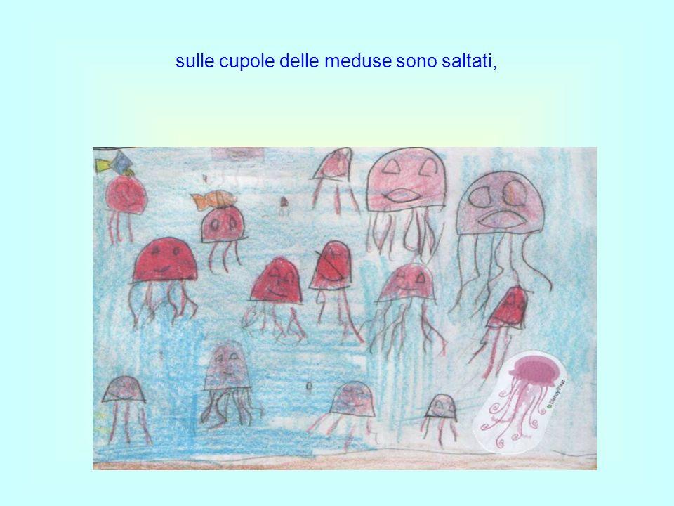 sulle cupole delle meduse sono saltati,