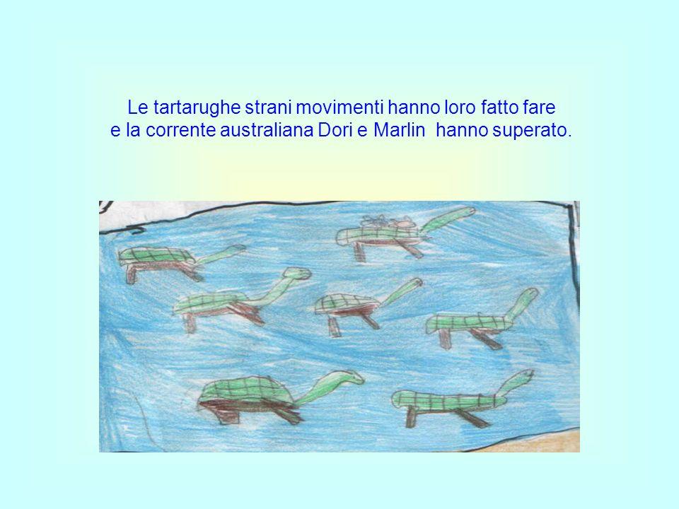 Le tartarughe strani movimenti hanno loro fatto fare e la corrente australiana Dori e Marlin hanno superato.